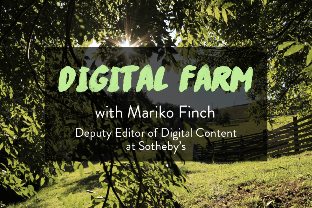 Digital Farm Mariko Finch